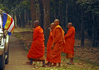 Monks outside Ankor Wat, Cambodia