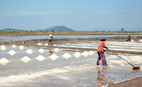 Salt production, Kompot, Cambodia